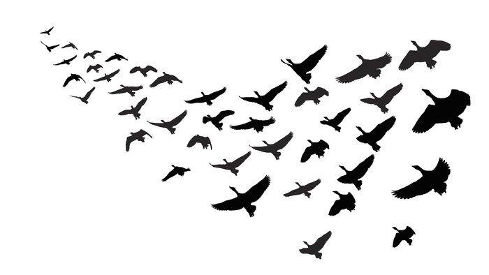 Sticker - Pixerstick wild geese in flight -