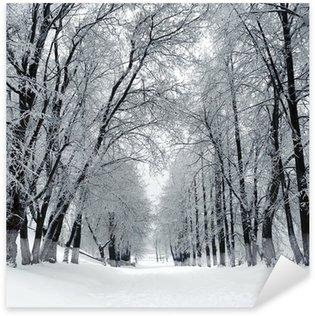 Winter park, scenery Sticker - Pixerstick