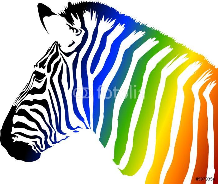 Pixerstick for All Surfaces Zebra a colori - Animals