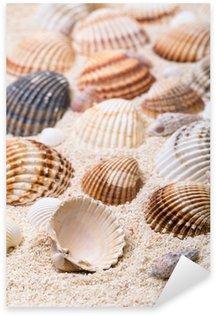 Pixerstick Sticker Zee schelpen met koraalzand