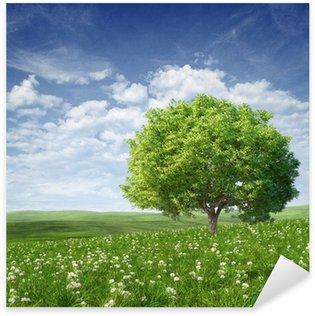 Pixerstick Sticker Zomer landschap met groene boom