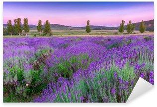 Pixerstick Sticker Zonsondergang over een zomer Lavendel veld in Tihany, Hongarije