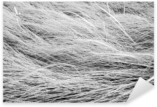 Pixerstick Sticker Zwart-wit foto, close-up lange grasveld texture backgrou