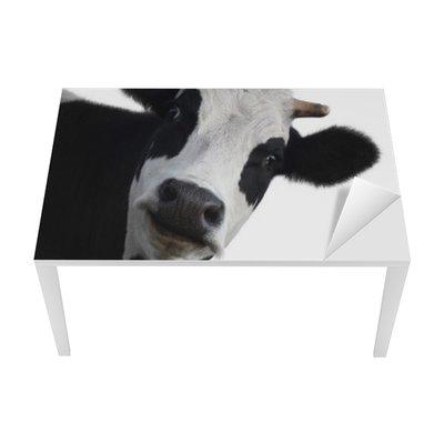 Cow Table & Desk Veneer