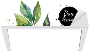Kitchen herbs and spices banner. Vector illustration. Watercolor Table & Desk Veneer