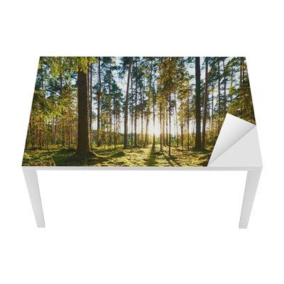 Sunrise in pine forest Table & Desk Veneer