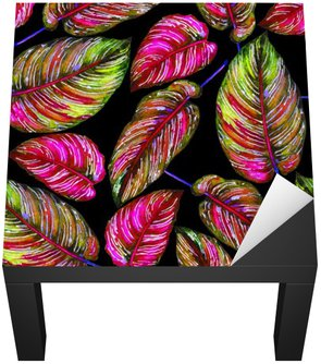Tropical foliage seamless pattern. Colorful leaves of exotic Calathea Ornata plant on black background, vibrant colors. Handmade watercolor illustration.