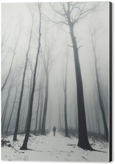 Tableau Alu-Dibond L'homme dans la forêt avec de grands arbres en hiver