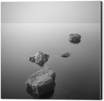 Tableau Alu-Dibond Minimaliste paysage brumeux. Noir et blanc.