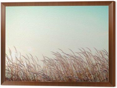 Tableau en Cadre Abstraite nature vintage background - douceur herbe plume blanche avec rétro espace de ciel bleu