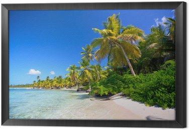 Tableau en Cadre Caraïbes plage de sable avec des palmiers en République Dominicaine