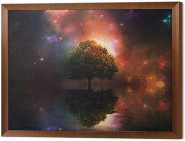 Tableau en Cadre Ciel de nuit et l'arbre