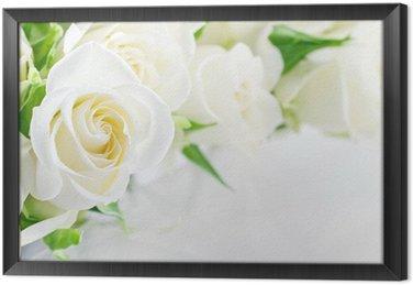 Tableau en Cadre Gros plan de roses blanches