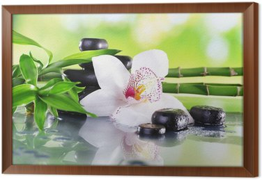 Tableau en Cadre Pierres de Spa, des branches de bambou et orchidée blanche
