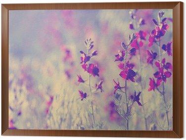 Tableau en Cadre Purple fleurs sauvages