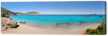 Tableau sur Toile Aiguas White Water blanc Ibiza plage