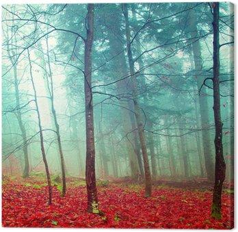 Tableau sur Toile Arbres colorés d'automne mystiques