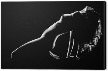 Tableau sur Toile Artistique Femme nue dans le studio