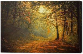 Tableau sur Toile Automne dans la forêt