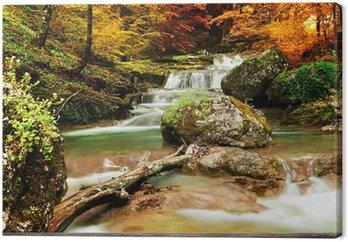 Tableau sur Toile Automne ruisseau bois avec des arbres jaunes