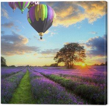 Tableau sur Toile Ballons à air chaud survolant le coucher du soleil paysage de lavande