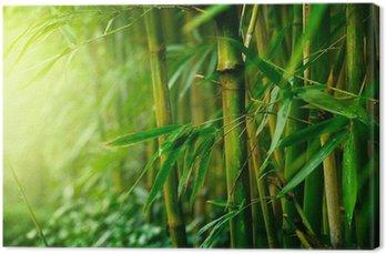 Tableau sur Toile Bambou