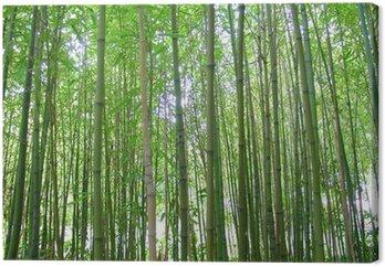 Tableau sur Toile Bambous