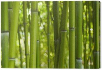 Tableau sur Toile Bambus Bamboo 06