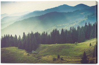 Tableau sur Toile Beau paysage de montagne l'été