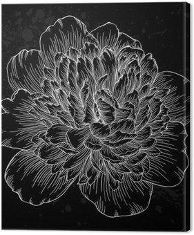 Tableau sur Toile Belle fleur de pivoine noir et blanc isolé sur fond. lignes de contour et coups dessinée à la main.