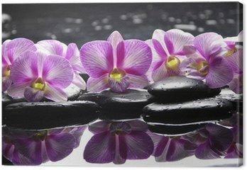 Tableau sur Toile Belle orchidée rose avec pierres noires réflexion