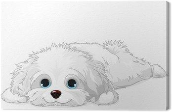 Tableau sur Toile Blanc puppy
