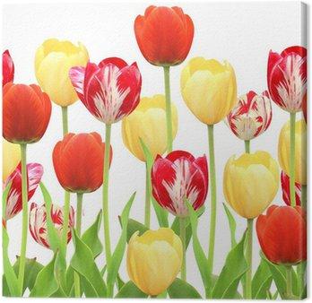 Tableau sur Toile Cadre sans joint avec des tulipes