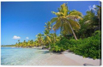 Tableau sur Toile Caraïbes plage de sable avec des palmiers en République Dominicaine
