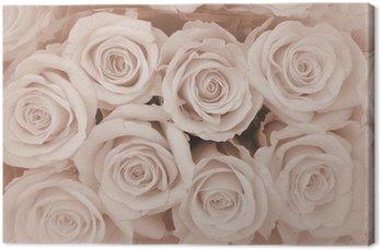 Tableau sur Toile Carte de sympathie roses fond ...