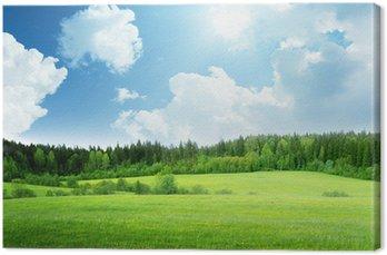Tableau sur Toile Champ d'herbe et ciel parfait