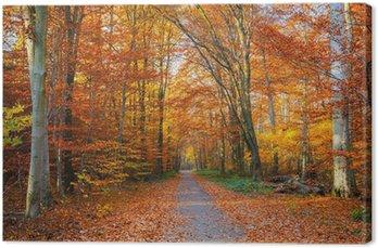 Tableau sur Toile Chemin dans la forêt d'automne