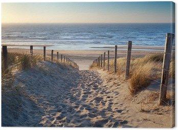 Tableau sur Toile Chemin de plage de la mer du Nord dans le soleil d'or