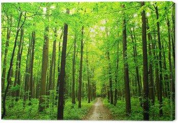 Tableau sur Toile Chemin forestier