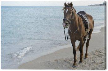 Tableau sur Toile Cheval sur la plage