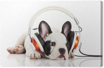 Tableau sur Toile Chien écouter de la musique avec un casque isolé sur blanc backgro