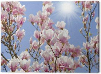 Tableau sur Toile Ciel bleu avec la fleur de magnolia
