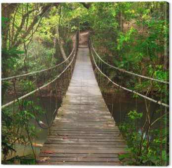 Tableau sur Toile Combler dans la jungle, Parc national Khao Yai, Thaïlande