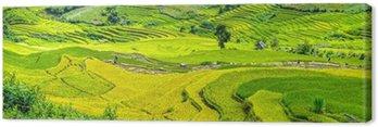 Tableau sur Toile Dans Yen Bai, Vietnam - 25e Septembre, 2015: Les agriculteurs dans les domaines de la récolte des rizières en terrasses en automne après-midi à Mu Cang Chai, Yen Bai, Vietnam