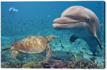 Tableau sur Toile Dauphins et tortues sous-marine sur le récif