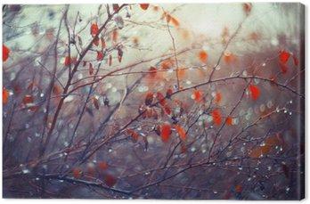 Tableau sur Toile De fond avec des branches et des gouttes de pluie