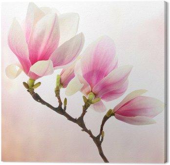 Tableau sur Toile Décoration de magnolia