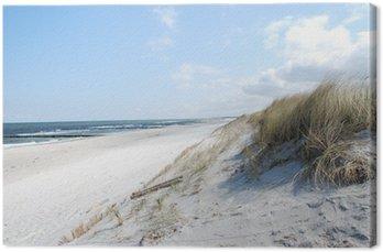 Tableau sur Toile Dunes Plage