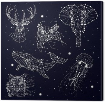 Tableau sur Toile Ensemble de la constellation, l'éléphant, le hibou, le cerf, les baleines, les méduses, le renard, étoiles, graphiques vectoriels
