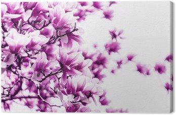 Tableau sur Toile Fleur de magnolia fleur